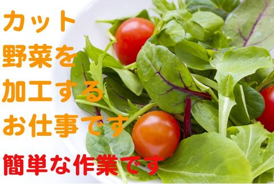 きれいな工場での製造スタッフ大募集☆60代の方も活躍中の野菜加工業務 イメージ