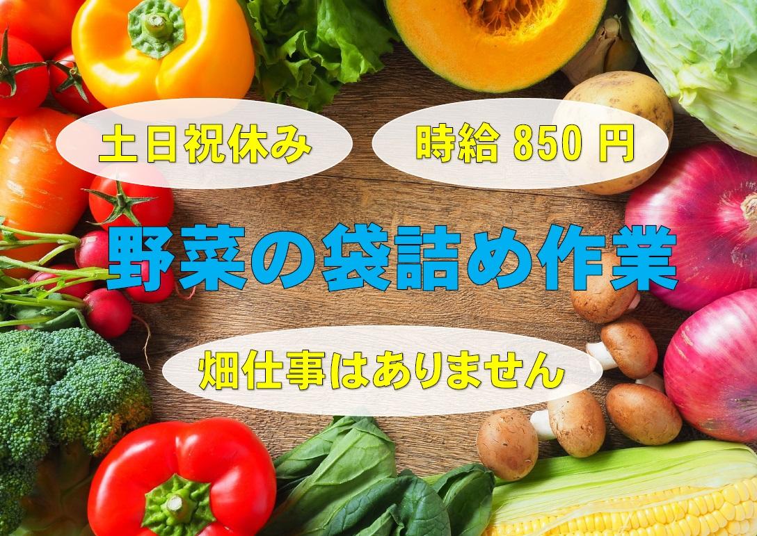 \土日祝休みで家事との両立を応援♪畑仕事なしの倉庫内での野菜の袋詰め作業/ イメージ